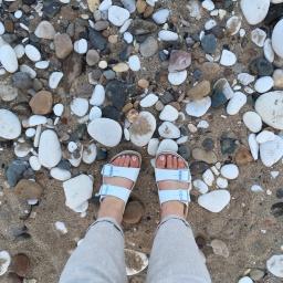 Heading to the beach…